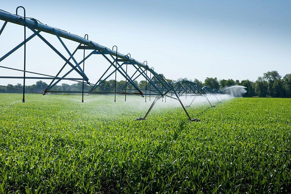 Irrigation Construction in Champaign, Illinois